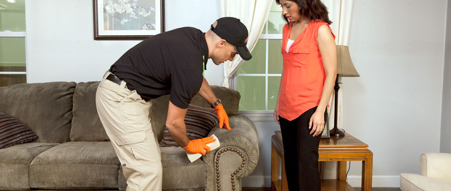 Burlington, WI carpet upholstery cleaning